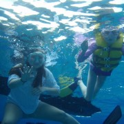 Kids snorkeling off Pacific Wave