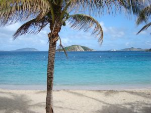 Visit a white sandy beach find a palm tree and hang out