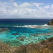 Hiking on Norman Island BVI
