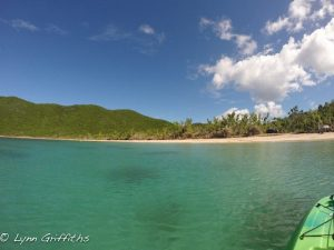 Francis Bay St John Blue Skies and White Sandy Shores
