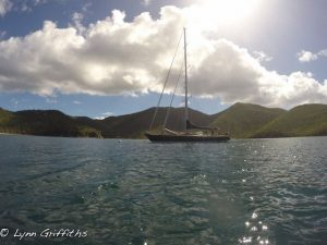 Pacific Wave all alone moored in Francis Bay St John